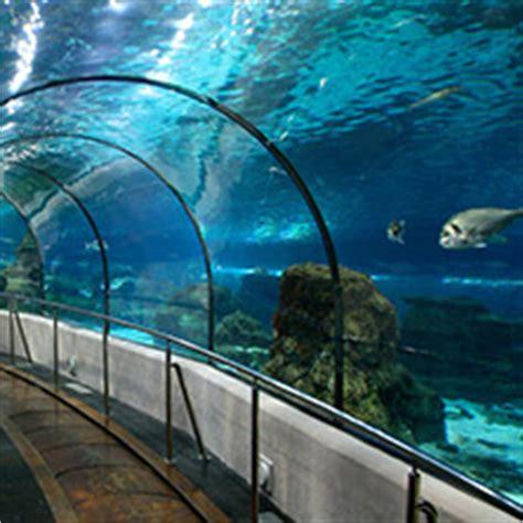 Entradas en L Aquarium de Barcelona   entradas.com