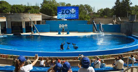 Entradas Zoo Aquarium de Madrid 2021   Las mejores ofertas