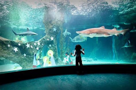 Entradas Zoo Aquarium de Madrid | Taquilla.com