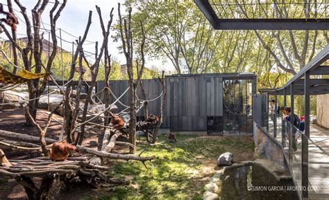 Entradas Zoo Barcelona 2x1   SEO POSITIVO