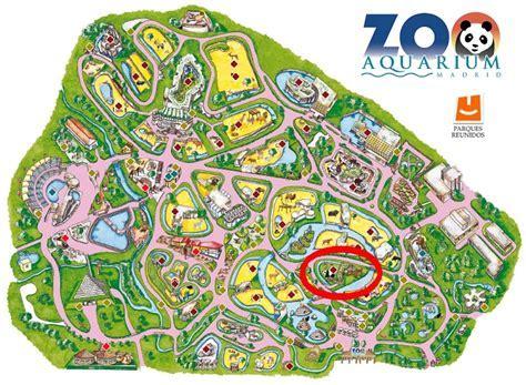 Entradas Zoo De Madrid   SEO POSITIVO