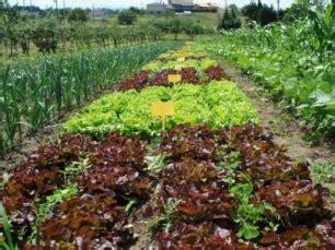 Entrevista: La importancia de la Agricultura Ecológica