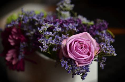 Enviar cajas de flores en Valencia   Floristería online ...