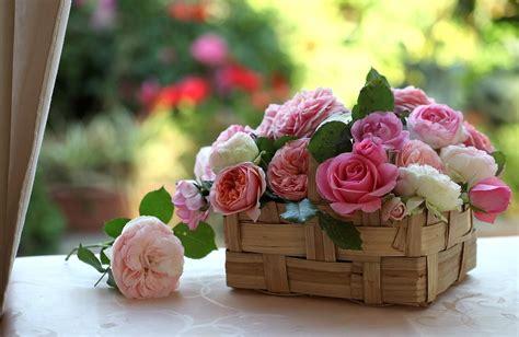 Enviar cestas de plantas para nacimientos   FloreStore