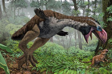 Época del Eoceno: caracteristicas, geología, clima, flora ...