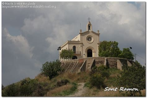 Ermita de Sant Ramon en Sant Boi del Llobregat   6242 ...