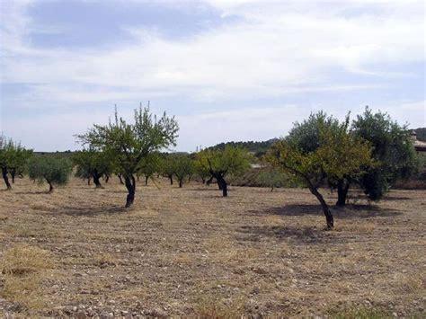 eroakfalces: Agricultura de secano