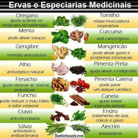 Ervas aromáticas e medicinais | Ervas, Congelar ervas ...