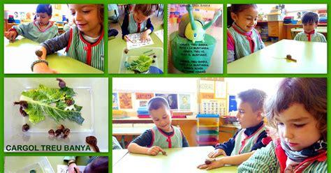 Escola Salvador Dalí, Figueres #Educació Infantil: P4 ...