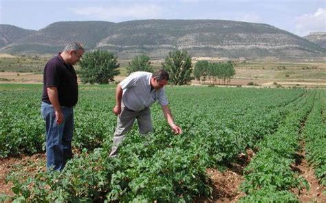 España duplica la superficie de cultivos ecológicos ...