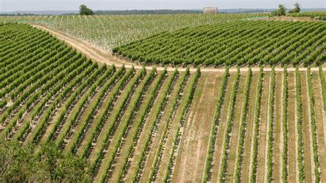 España insiste en que la agricultura debe seguir siendo un ...