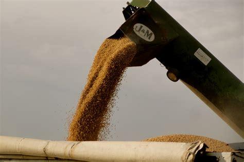 Esta semana el precio de la soja pizarra Rosario registró ...