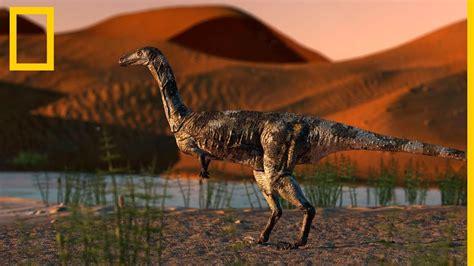 Este es el fósil de dinosaurio terópodo mejor conservado ...