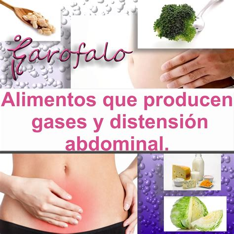 Estética y Nutrición Garofalo.: Alimentos que producen ...