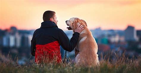 Estos son los 11 beneficios del amor incondicional según ...