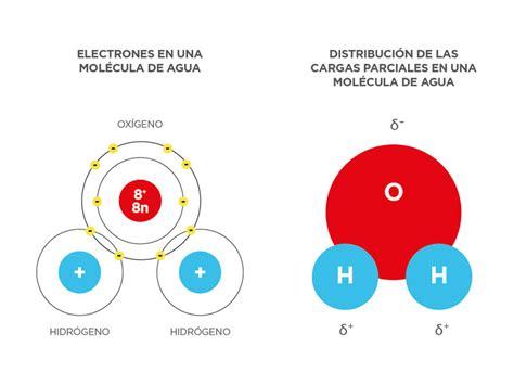 Estructura Molecular Del Agua Biologia   2020 idea e ...