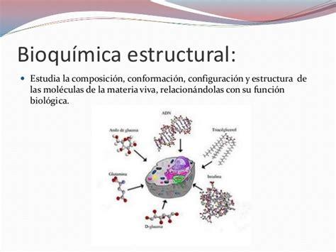 Estructura y funcion molecular Introduccion