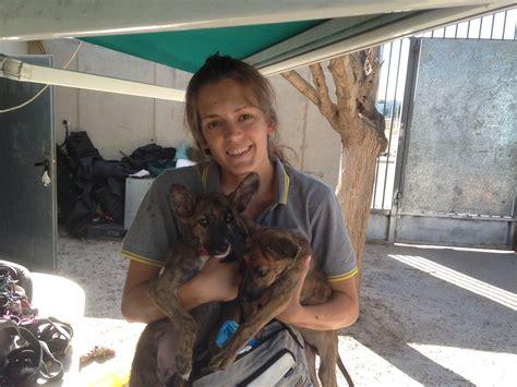 Estudio veterinaria y soy voluntaria y socia de la ...