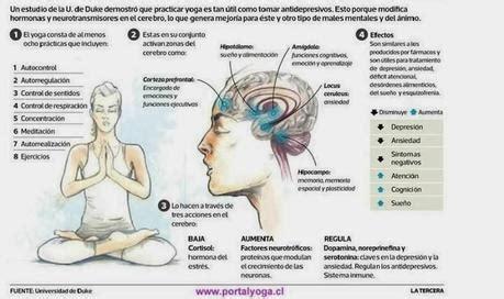 Estudios prueban que el yoga mejora la salud mental ...