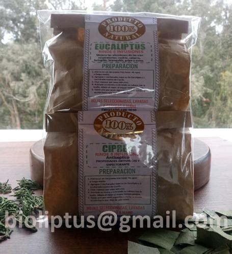 Eucalipto y cipres fresco oferta pack $600 mayorista en ...