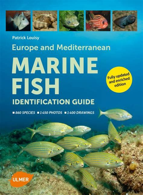 Europe and Mediterranean Marine Fish Identification Guide ...