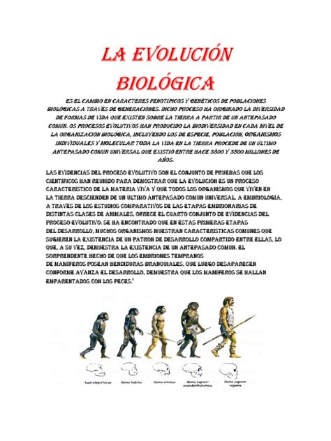 evolucion biologica | Evolución | Organismos | Prueba ...