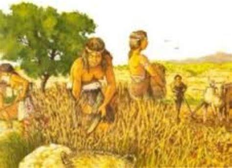 EVOLUCION DE LA AGRICULTURA timeline | Timetoast timelines