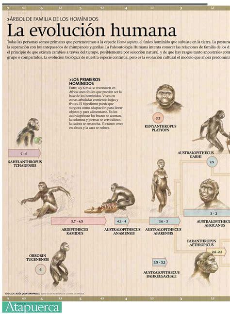 Evolución de la especie humana. Evolución del hombre