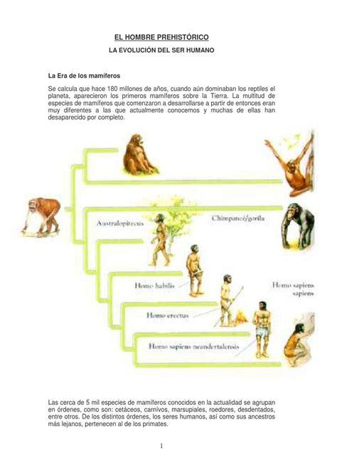 EVOLUCION DEL HOMBRE | Evolucion del hombre, Evolución ...