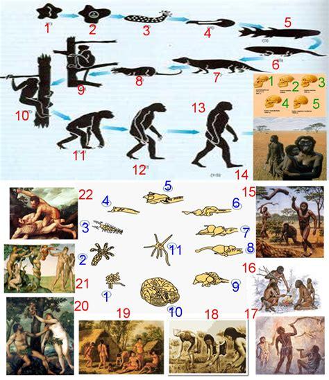 Evolución y Desarrollo Humano: Pasado de la Evolución ...
