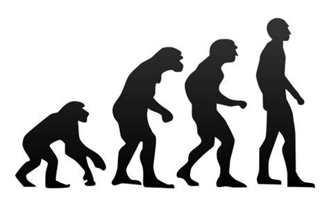 Evolución y Teoría de la Evolución: ¿Qué es la Evolución ...