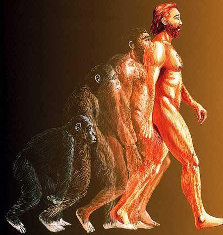 Evolucionismo unilineal | Aumentaty Community