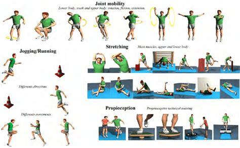 Examples of exercises with preventive content in warm up ...