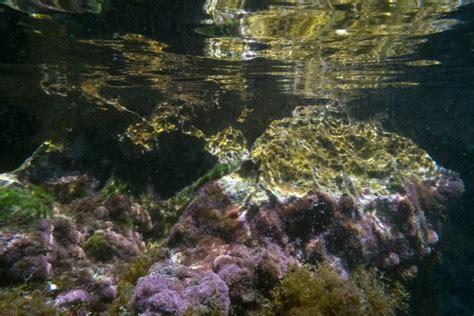 Excursión: Buceo en Malta   Excursiones por el mundo