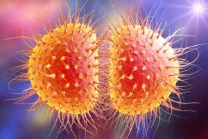 Experts brace for more super resistant gonorrhea | CIDRAP