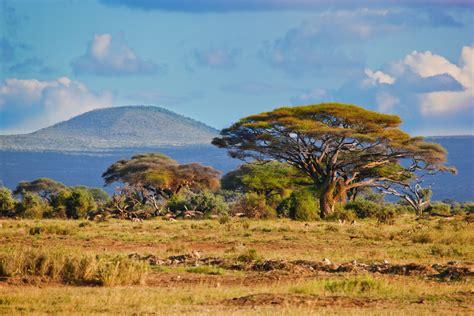 Explore Kenya s natural beauty   HomeAway Blog   Travel Blog