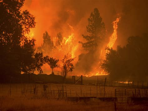 Explosive wildfire sends thousands fleeing for lives in ...