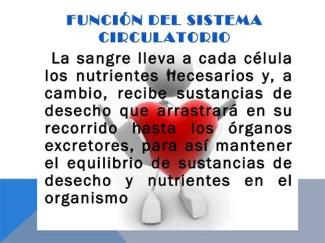 Expo sistema circulatorio