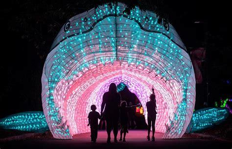 Extienden por 18 noches el show Boston Lights en el Zoo ...