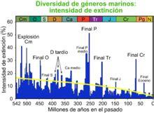 Extinción masiva del Cretácico Paleógeno   Wikipedia, la ...
