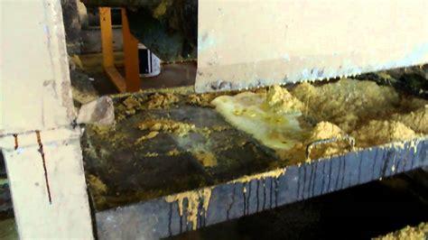 Extracción aceite de soja  Salto B     YouTube