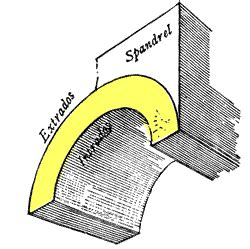 Extrados The convex curve formed by the outer edge of an ...