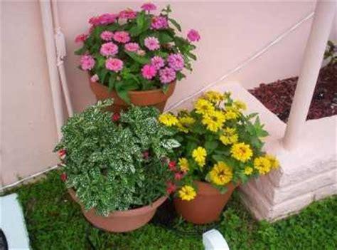 Fabrica tu propio sustrato para plantas en macetas