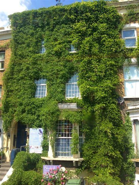 Fachada verde  con imágenes  | Fachada verde, Fachadas, Verde