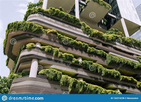 Fachada Verde Da Natureza Na Construção Moderna Foto de ...