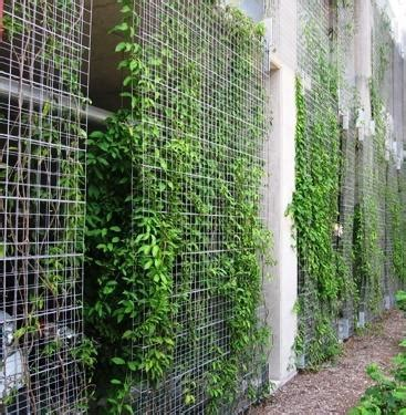Fachada Verde Indireta em Treliça Modular. | Download ...