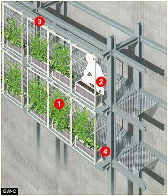 Fachadas vegetales, sistemas constructivos. | Sistemas ...