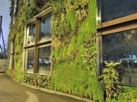 Fachadas verdes para mejorar la salud de los urbanitas ...