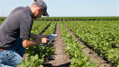 Facilita Yara la agricultura en México con nueva ...