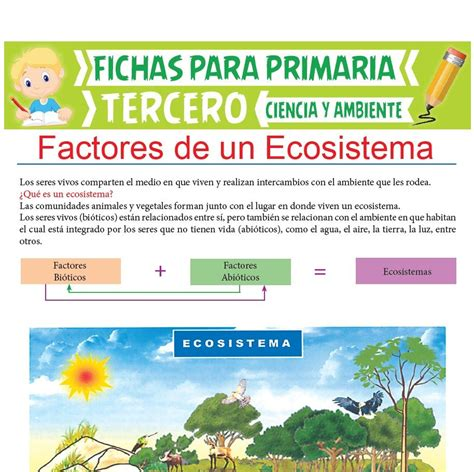 Factores de un Ecosistema para Tercer Grado de Primaria ...